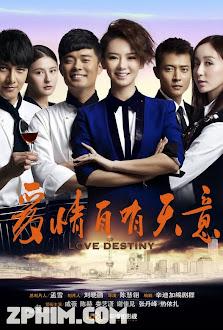 Tình Yêu Định Mệnh - Love Destiny (2013) Poster