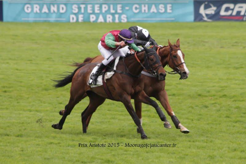 Photos Auteuil 16-05-2015 Week-end printanier de l'obstacle  IMG_9326