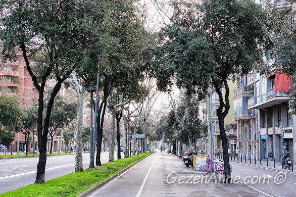 ortası yayalara ayrılmış geniş Barselona caddeleri