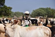 S chovem domácích zvířat souvisí také uchování masa. Základem je správné zpracování a uskladnění. (Foto: Tereza Hronová, ČvT)