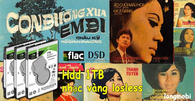 hdd 2000 cd nhac lossless chat luong cao
