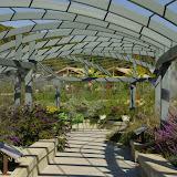 10-26-14 Dallas Arboretum - _IGP4474.JPG