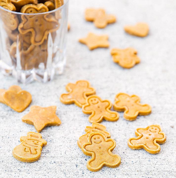 photo of homemade dog treats on a counter