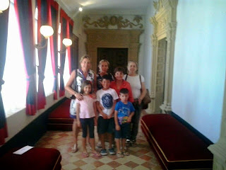 Visitas Castillo 2014