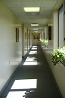 The Hallway of the Popes