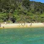 Seakajaktour im Abel Tasman Nationalpark