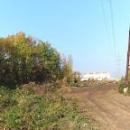 Вырубки ЛЭП в Воронежской Нагорной Дубраве 063.jpg