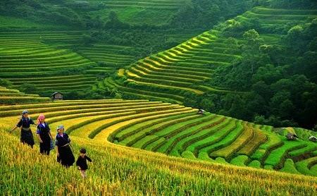 Bao My nhan dinh Tuong lai du lich Viet Nam nam o truyen thong van hoa