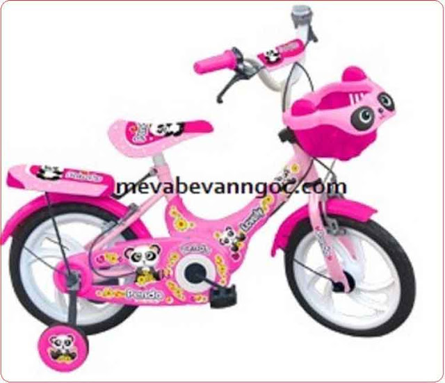 Xe đạp trẻ em nhựa chợ lớn 14 inch