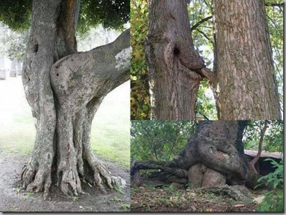 naughty mother nature 2