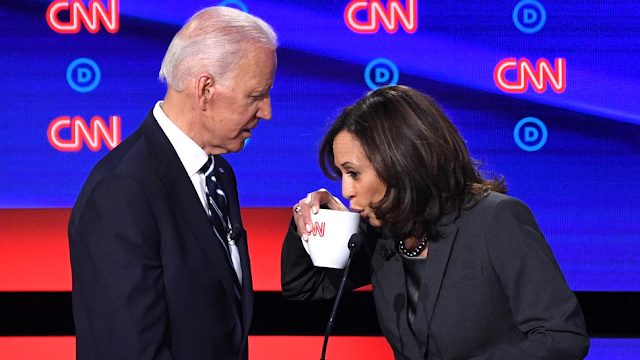 Kamala Harris Taking Calls With Foreign Leaders On Behalf Of Biden: Report