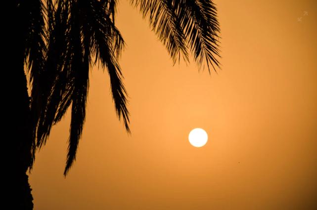 सूरा-अज़-जुमर | Surah 39