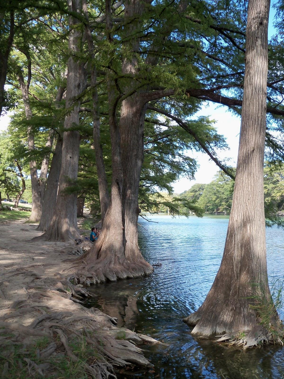 Fall Vacation 2012 - 115_3832.JPG