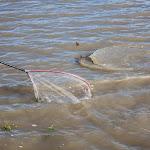 20160710_Fishing_Grushvytsia_010.jpg