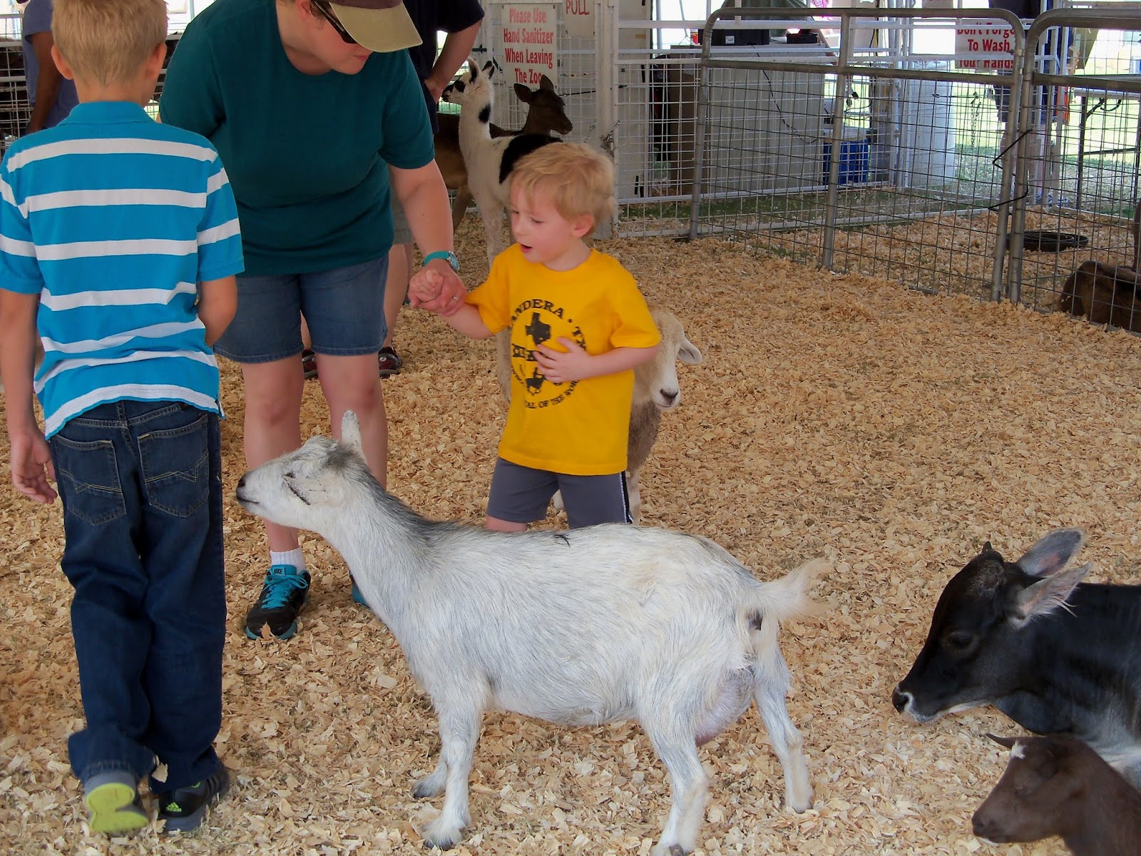 Fort Bend County Fair 2015 - 100_0199.JPG