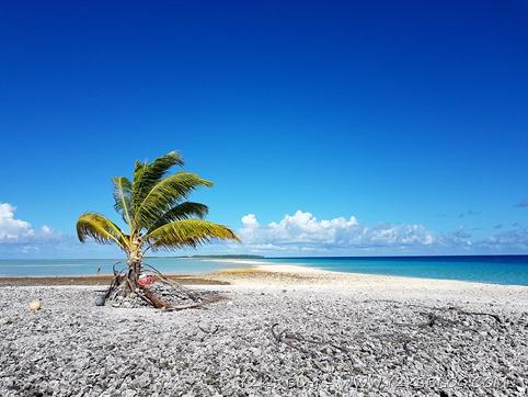 """One palm island"", il mini-motu - Toau"