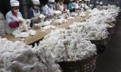 Desperdicios o borra de algodón trabajados en China