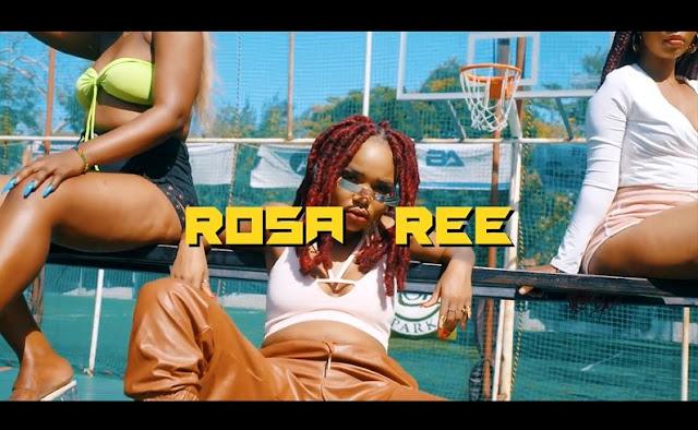 VIDEO | Rosa Ree - Watatubu | Mp4 Download