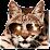 The Desert Lynx's profile photo