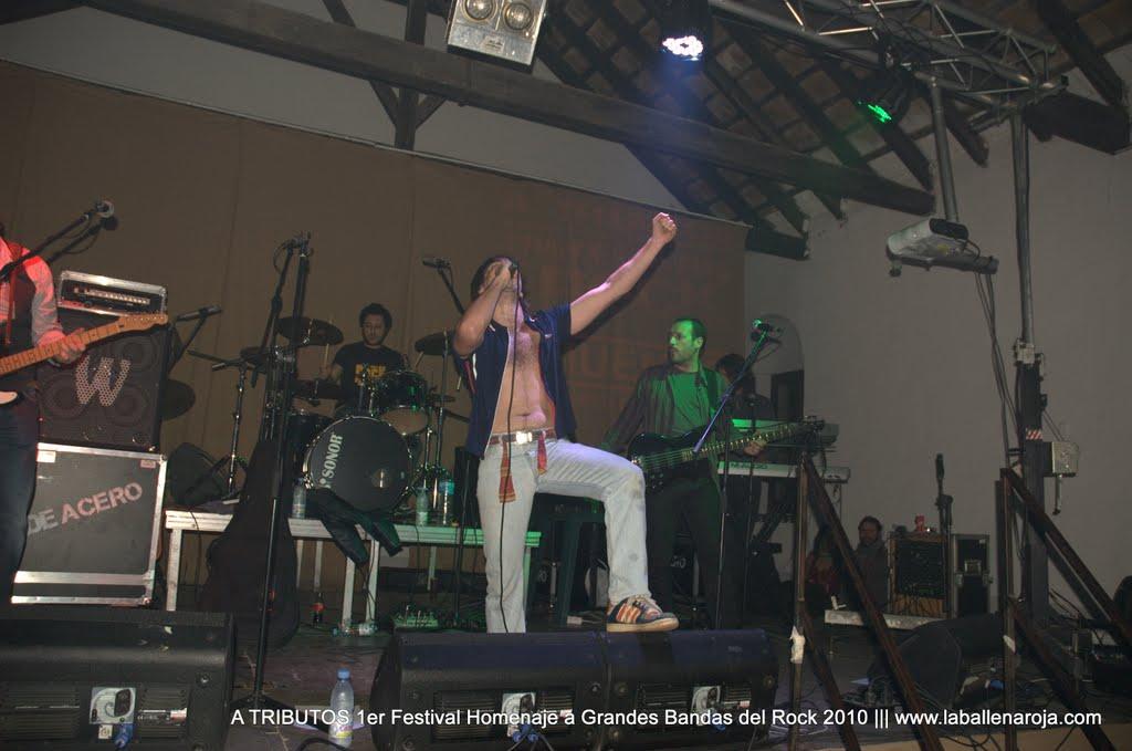 A TRIBUTOS 1er Festival Homenaje a Grandes Bandas del Rock 2010 - DSC_0012.jpg