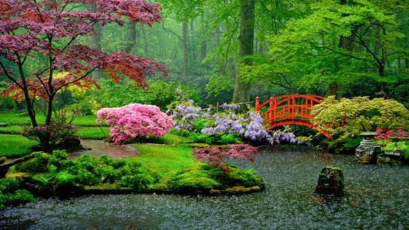 Jardín Japonés con flores rosadas