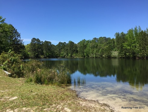 Little fishing lake