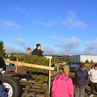 Christmas Tree Pickup 2014 - DSC_0083.jpg