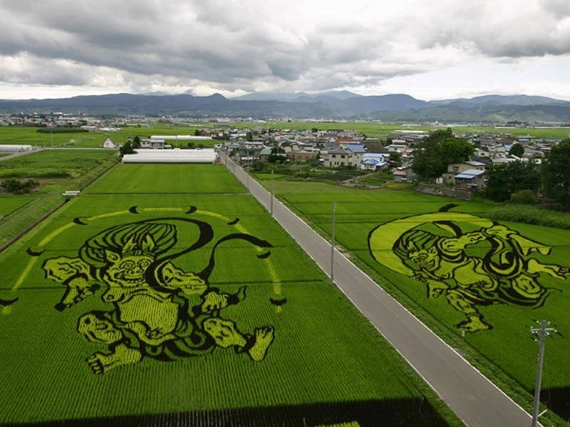 japanese-rice-paddy-art-11