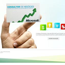 Projeto: Consultor de Negócios Microsoft - 2011