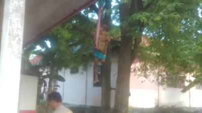 Lansia di Buteng Akhiri Hidupnya di Pohon Asam