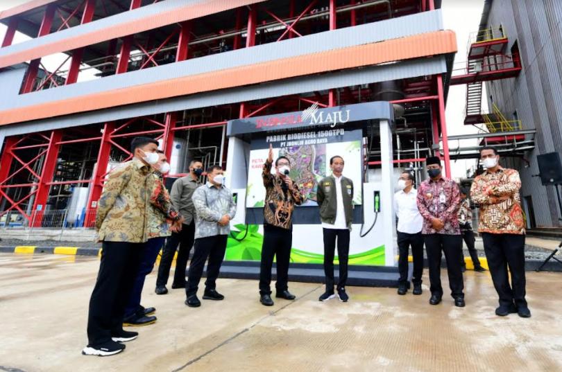 Jokowi: Hilirisasi dan Industrialisasi Kelapa Sawit Penting Dilakukan
