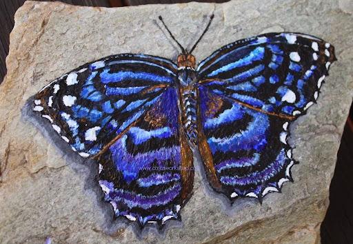 Paarse vlinder W.jpg