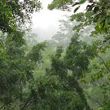 Tunda Loma (Calderon, Esmeraldas), 8 décembre 2013. Photo : J.-M. Gayman