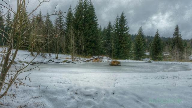 Verschneiter Teich