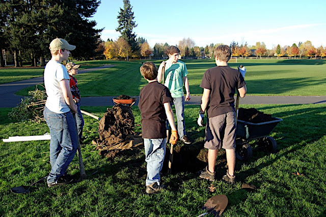 Tree Planting November 2010 - DSC_4535.JPG