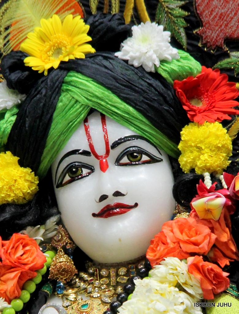 ISKCON Juhu Sringar Deity Darshan on 19th Nov 2016 (48)