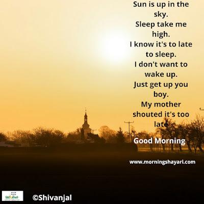Image for [सुप्रभात] प्रेम कविताएँ (बेटे के साथ माँ की बातचीत) [ Good morning ] love poems (mother conversation with son)