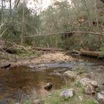 The Kedumba River (316421)