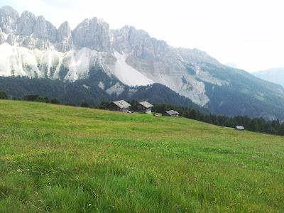 Almwiesen bei der Schatzerhütte