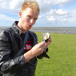 my first fresh giant oyster in Texel, Noord Holland, Netherlands