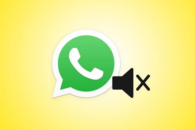 WhatsApp Vedio Mute?  - New update coming