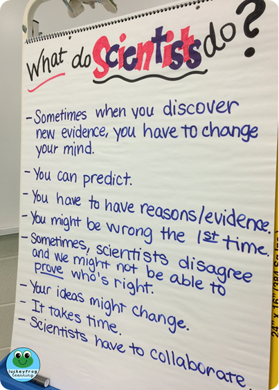 What do scientists do- anchor chart from Luckeyfrog Learning