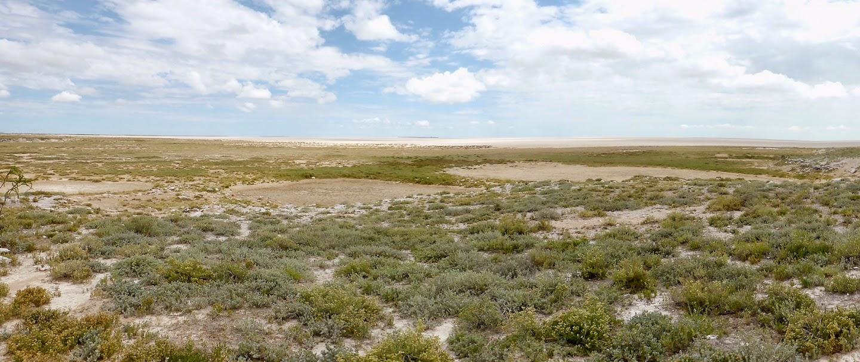 Zicht op de Etosha pan, een enorme zoutvlakte