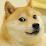 Dan uchiha's profile photo