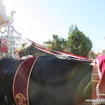 CaminandoalRocio2011_202.JPG