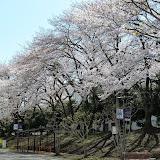 2014 Japan - Dag 2 - mike-P1050504-0040.JPG