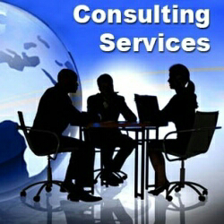 Consulting Agencies