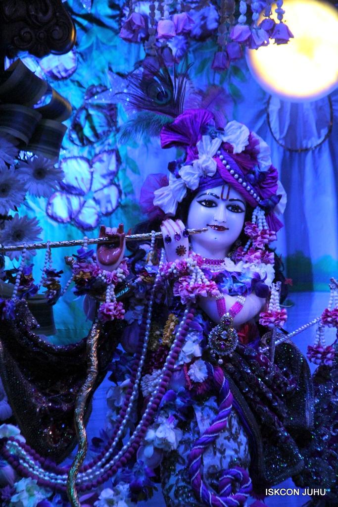 Sharad Purnima Deity Darshan on 16th Oct 2016 (17)