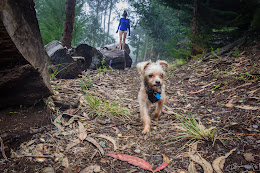 Skye and R2 on the trail