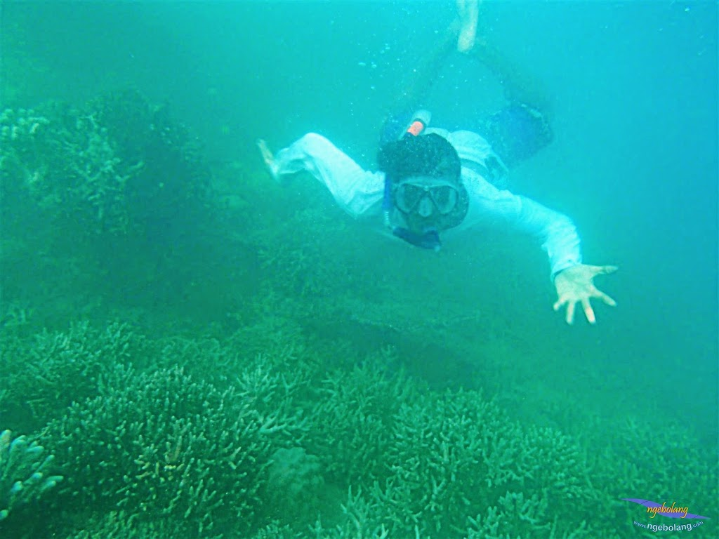 Pulau Harapan, 16-17 Mei 2015 Olympus  28